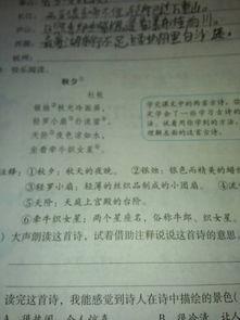 赞美泰山庐山长江西湖的诗句古诗