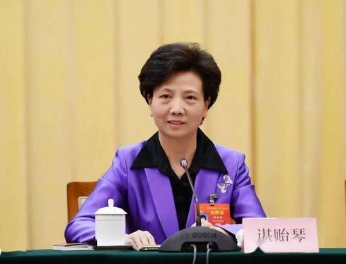 全国人大代表、省委副书记、省长谌贻琴参加会议并发言.