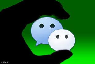 微信为什么在广州