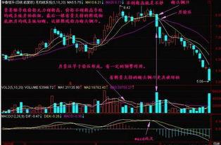 前两个字是中国的股票