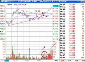 林园买的8支股票是什么?