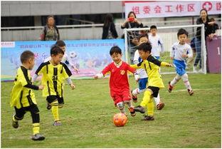 幼儿足球知识