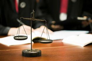 全球最佳实践者凸显中国司法5大制度优势