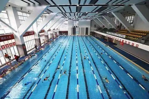 健身房游泳池跟游泳馆的比