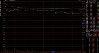 股票中的总量,现量是什么意思?