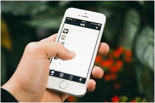 换手机了如何恢复微信聊天记录
