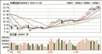000607华媒控股是个什么性质的股票