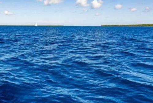 """""""你喜欢大海,我爱过你""""是什么意思(哪一个星座的人最喜欢大海)"""