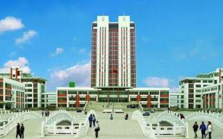 青岛农业大学的经济与金融专业