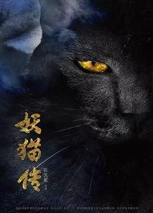 妖猫传 机器之血 心理罪之城市之光