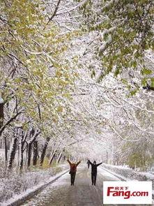 齐齐哈尔突降大雪,天津今天下午仍有大风降温,凌晨最低温度2,25号气温回升只24,请各位同学注意温度变化,差不多该穿秋裤了金地格林世界业主论坛天津房天下