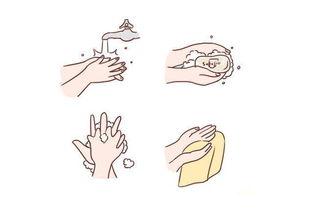 科学育儿洗手