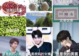 同样是土味情话,蔡徐坤用来撩粉丝,王俊凯则被粉丝撩