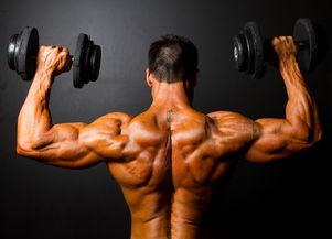 三个健身动作训练出完美背部肌肉