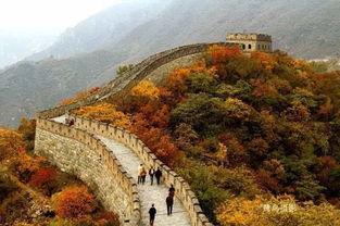 10月2022周末北京箭扣慕田峪野长城全路段穿越赏漫山红叶