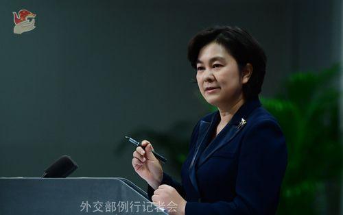 华春莹资料图,来源:外交部官网