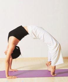 瑜伽的内置是什么