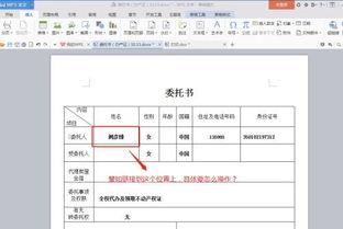 文档的阅读方法有哪些内容