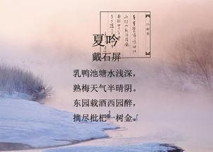 小学描写夏的古诗诗句
