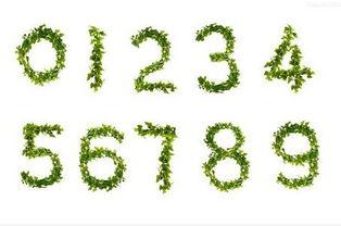 谁对数字的风水比较了解,数字风水有哪些应用(1~9数字风水中的含义