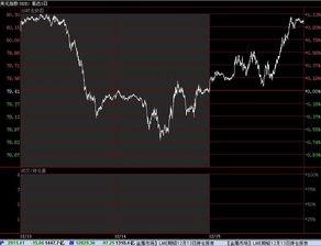 在什么軟件里可以看美國的股票,個股