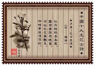 关于竹子花的诗句古诗