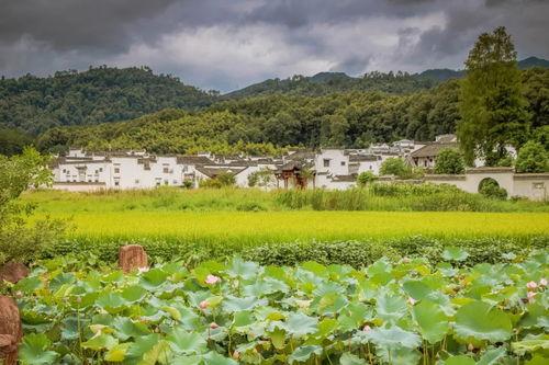 行走在九月里,漫步秋日田园,快来探寻安徽美丽的古村吧