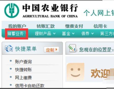 农业银行定期怎么查