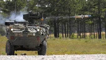 外国军队出动的照片 造型霸气