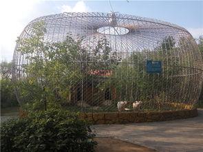 关于野生动物园动物笼舍设计的建议