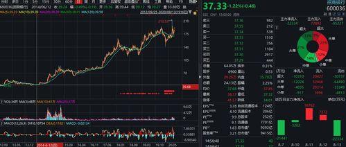 股票投资者收益分析