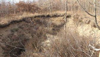 日本人在华疯狂盗墓,这座中国帝王陵最想挖