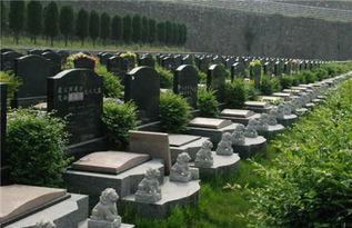葬在公墓一定要谨慎风水,如何理解公墓风水的好坏(怎样选择公墓陵园