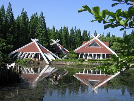 崇明东平国家森林公园旅游攻略