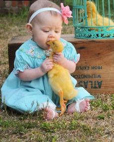 萌宝宝与动物爆笑的 互咬 瞬间