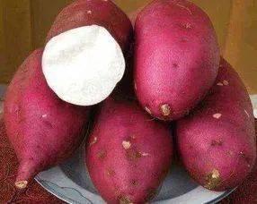 吃地瓜减肥吗(红薯面能减肥吗)