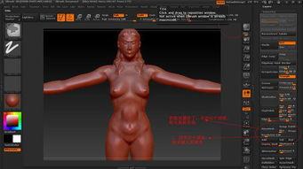 zbrush 和maya模型得布线问题