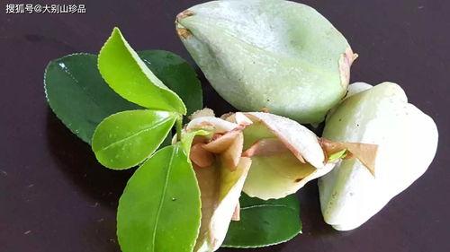 茶籽粉怎么养花
