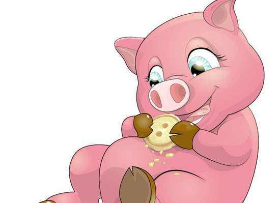 属猪的跟什么属相配_95年属猪跟什么属相配