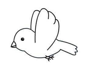 一只小鸟的简笔画