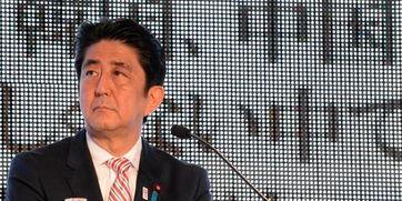 (日本首相安倍晋三)安倍政府当前的头等大事是急于在国会通过共谋罪法案.