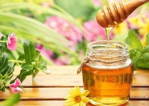 蜂蜜养花生根