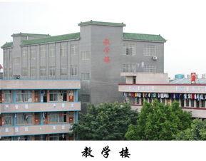广东省黄埔技工学校校园建筑图片展示