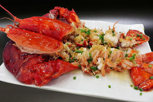 澳洲大龙虾海鲜餐饮美食海报