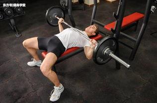 卧推架只能练胸 学会这些动作,让你练遍全身肌肉