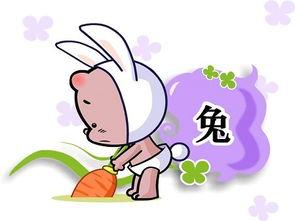 属兔之人的运程