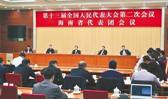 海南代表团审议全国人大常委会工作报告刘赐贵沈晓明张业遂出席
