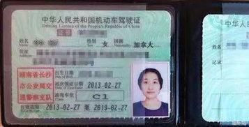 中国的驾照可以在哪些国家用