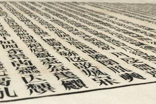 徐冰澳门谈 文字 专注于文字创作是希望改变思维