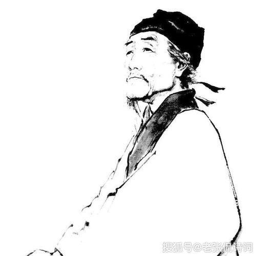 关于杜甫的思乡诗的诗句